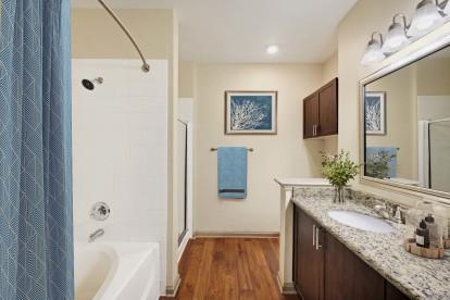 Bathroom with separate shower and bathtub granite countertops and wood look flooring