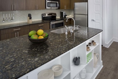 Uba tuba finishes kitchen with built in storage