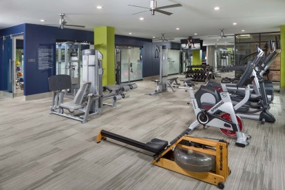 Fitness center with rowing machine and trx system