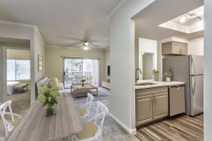Dining living kitchen open concept