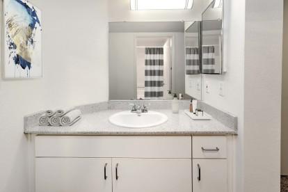 Bathroom vanity with storage and medicine cabinet