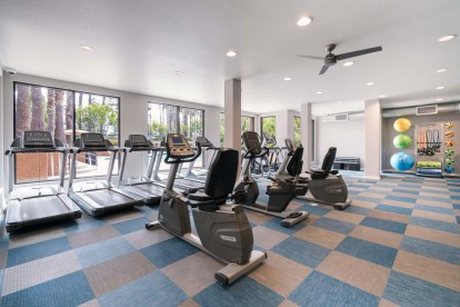 Cardio machines and stationary spin bikes and treadmills