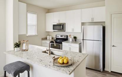 Modern style kitchen stainless appliances