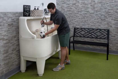 Pet Grooming Station