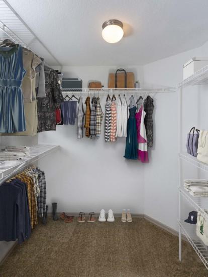 Spacious walk in closet and shelving