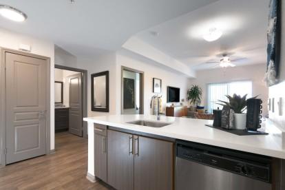 Modern style open concept kitchen with white quartz countertops