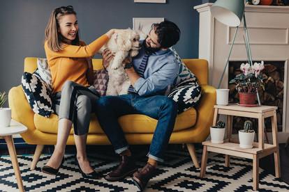 Pet friendly apartment homes