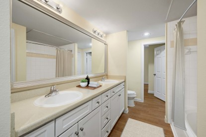 Contemporary finishes with double sink vanity and wood style flooring