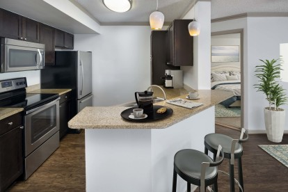 Kitchen with granite countertops, espresso cabinetry, and wood-inspired flooring.