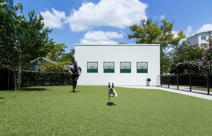 Dog park pet friendly apartments