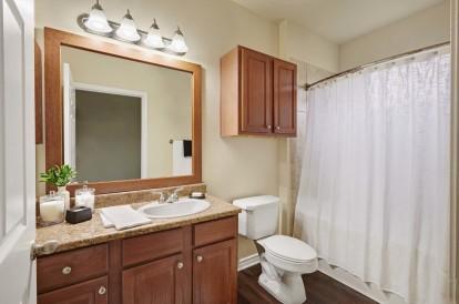 Bathroom with wood like flooring