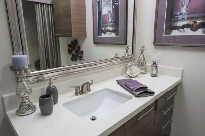 Modern style bathroom with quartz countertops and garden tubs