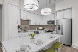 camden-carolinian-apartments-raleigh-nc-kitchen-with-island-counter white scope