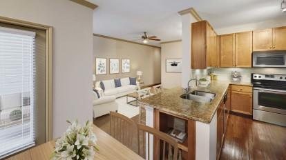Open concept floor plan living room and kitchen