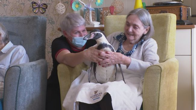 191021-penguin visit witney care home