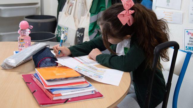 Pupil seen working in school.