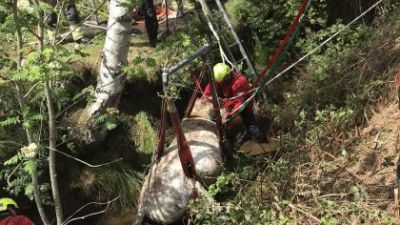 Hampshire & Isle of Wight Fire & Rescue Service and animal rescue advisors were called to a 24-year-old horse in Cadnam stuck in a water-filled ditch.