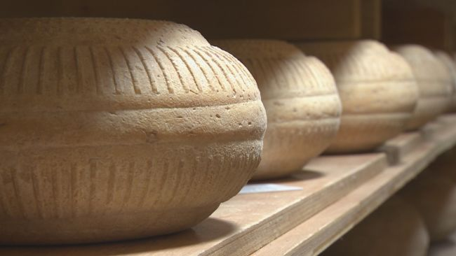 Cheese in the Ethical Dairy loft.