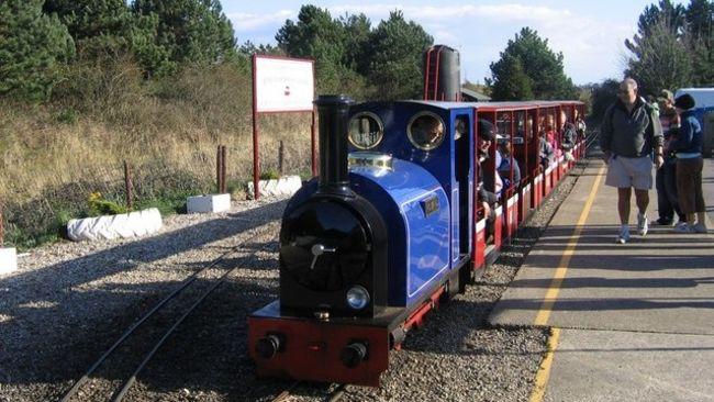 A narrow gauge train in a platform
