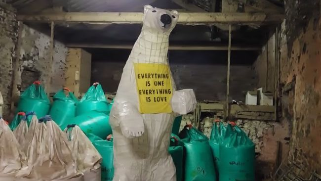 22/10/21. Clarion the polar bear, in Cumbria. ITV pic