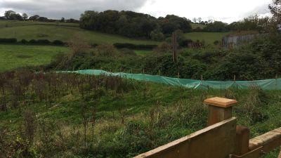 Fields at Little Blagdon Farm, Collaton St Mary