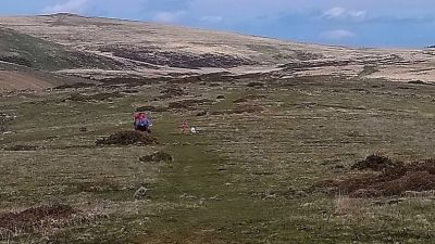 31-05-21 Air Ambulance on Dartmoor after man was trampled-Dartmoor Search and Rescue Team
