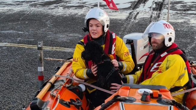 RNLI crew member Ella Marston with Lucy the cockapoo safely on board.