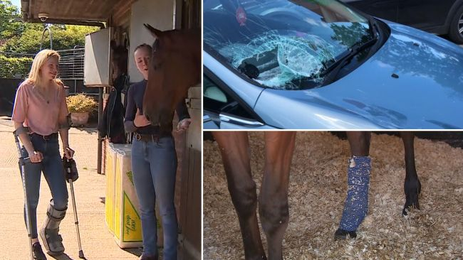 Katie Margarson and filly Luna are both still recovering from their injuries