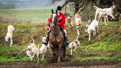 Members of the Grove and Rufford Hunt, formed in 1952, near Bawtry in South Yorkshire as hundreds of packs across the country meet for traditional Boxing Day hunts.  Danny Lawson/PA
