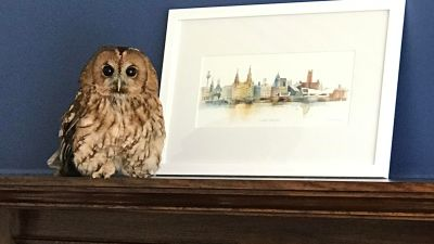 An owl sits on top of a fireplace at house in Southport