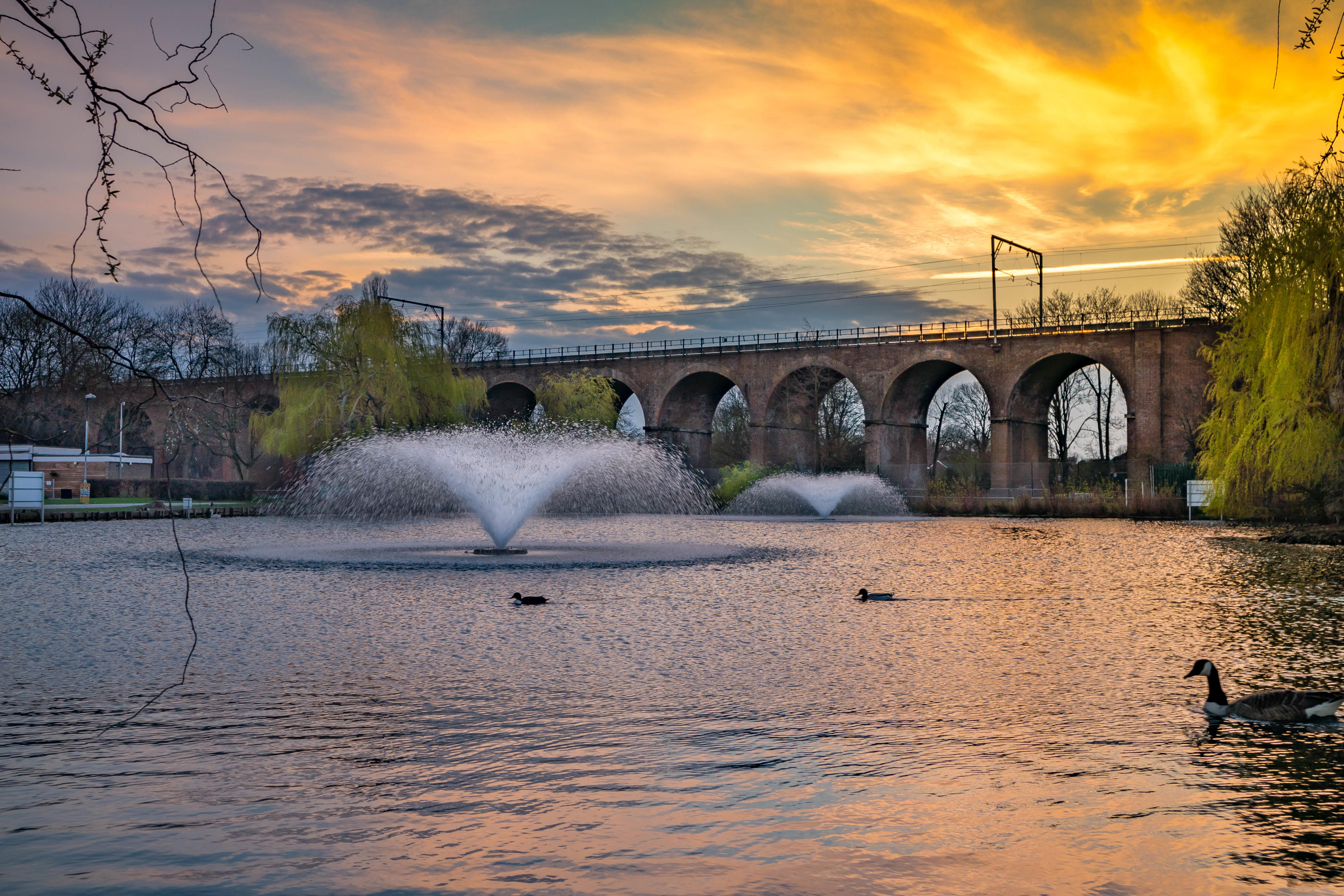Pompadour - Local Image - Chelmsford Viaduct
