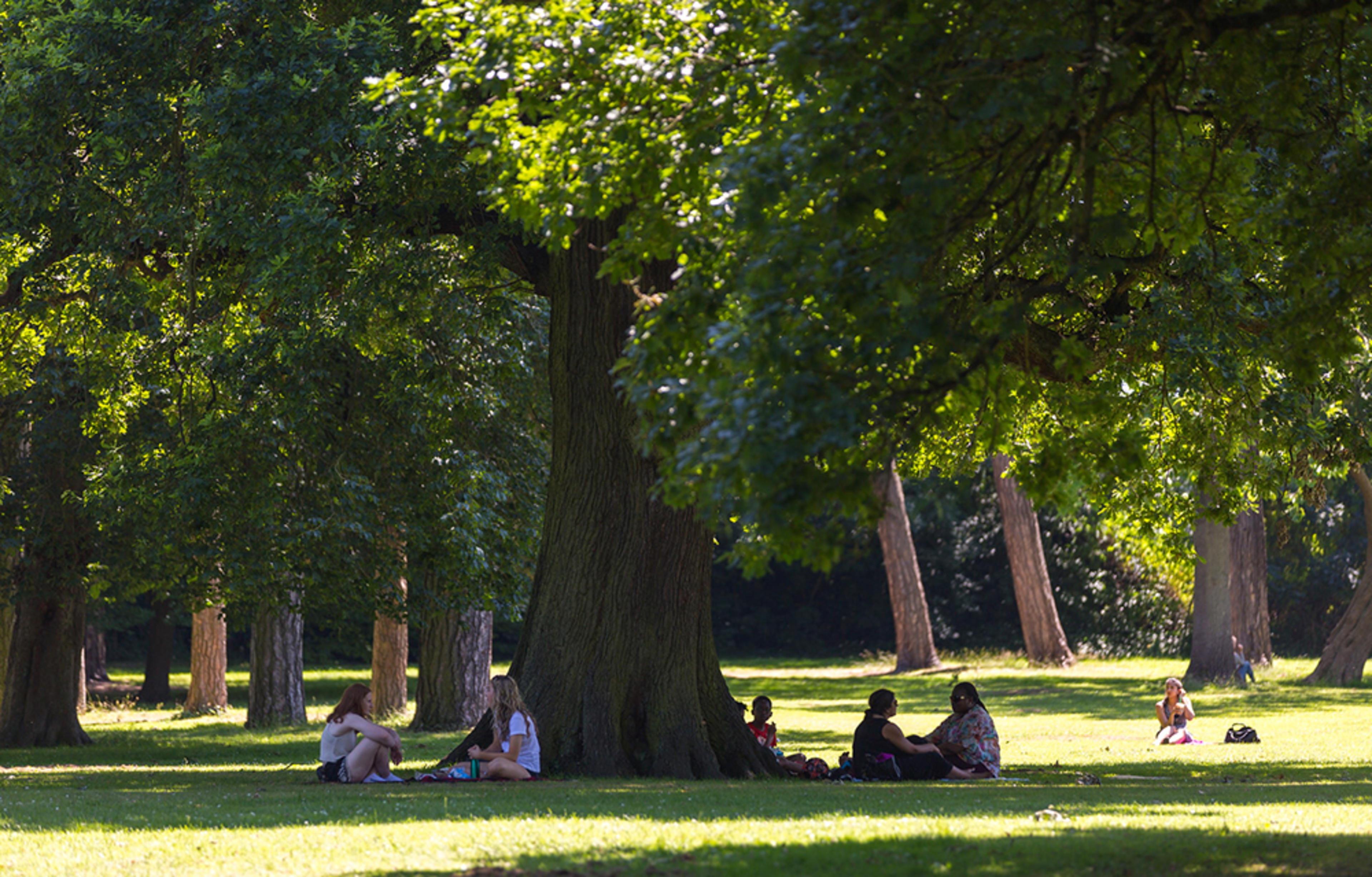 franklin-court-borehamwood-local-area-park