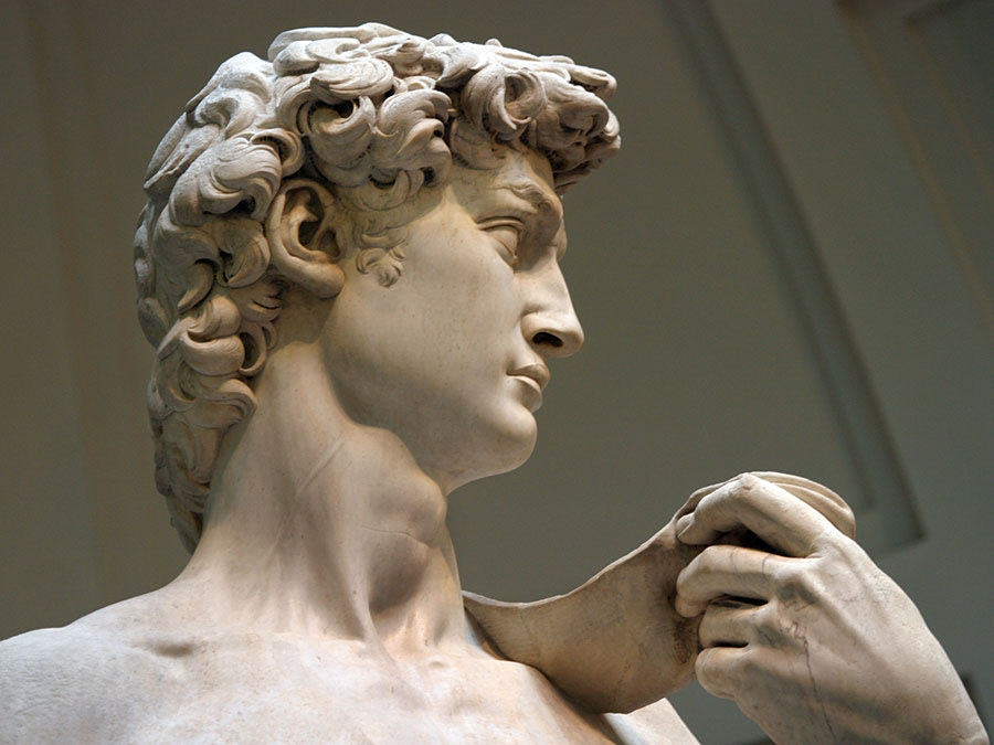 David, detail of head of sculpture by Michelangelo