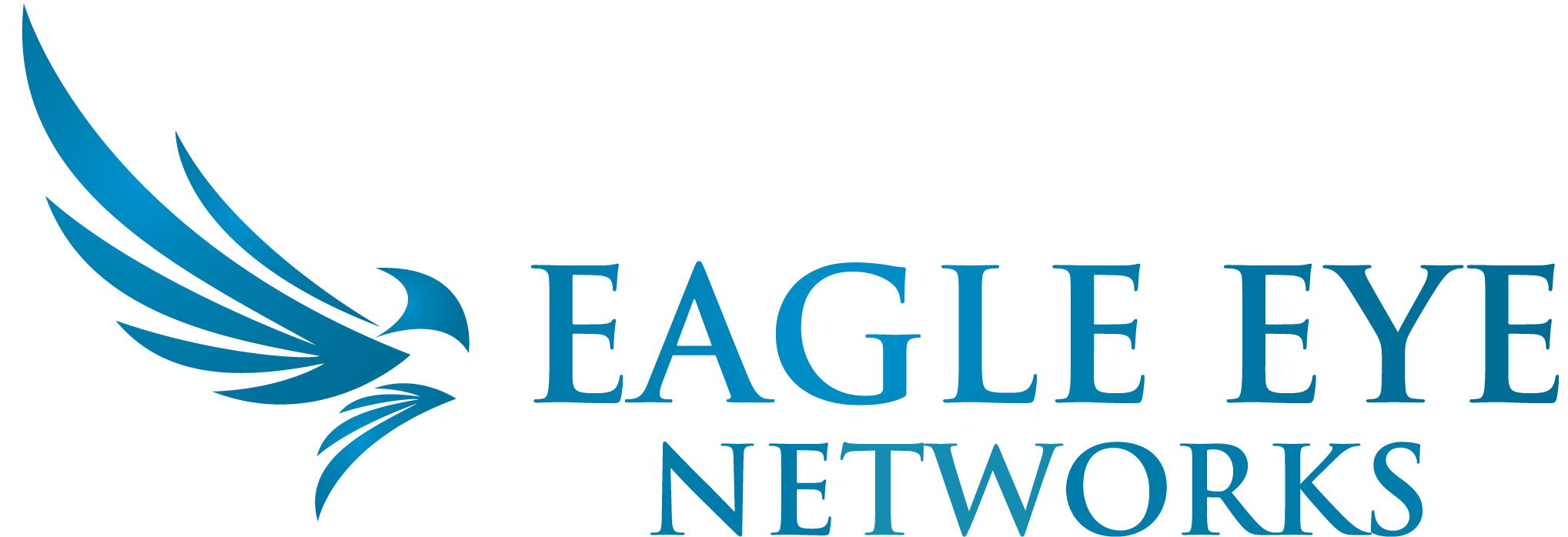 Eagle Eye Logo Horizontal Blue