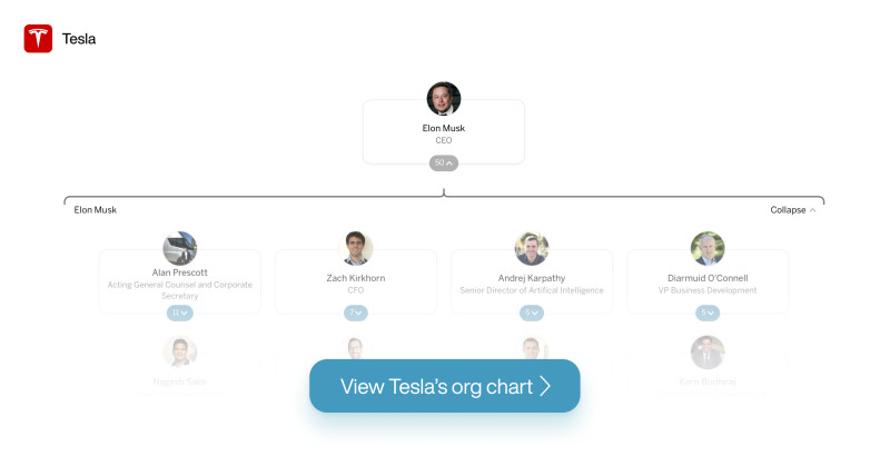Tesla's org chart on The Org