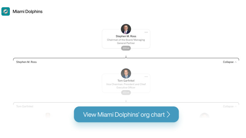 The Miami Dolphins' org chart on The Org