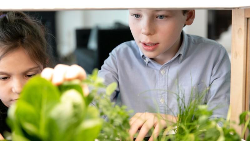 Kids looking at a Rise Gardens garden