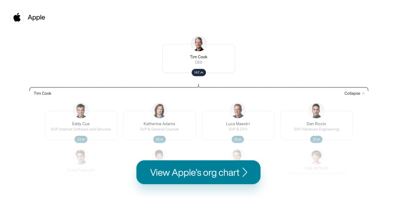 Apple Org Chart 8/18/20