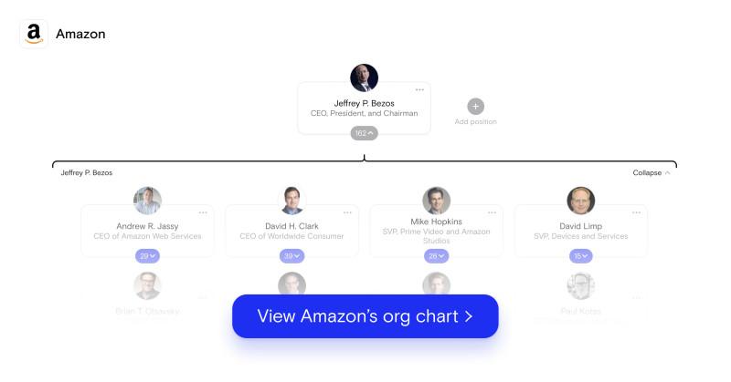 Amazon OC New