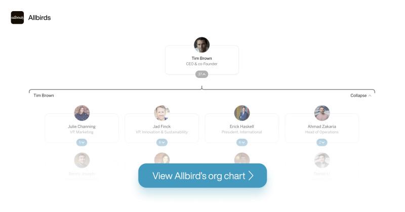 Allbirds Org Chart on The Org