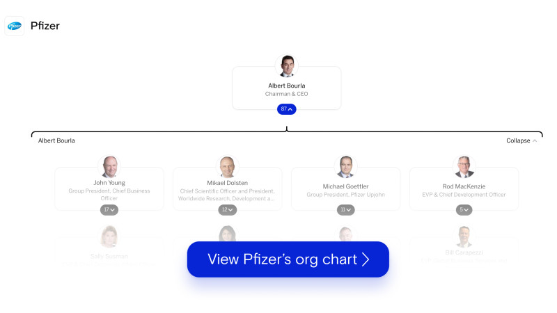 Pfizer's org chart on The Org