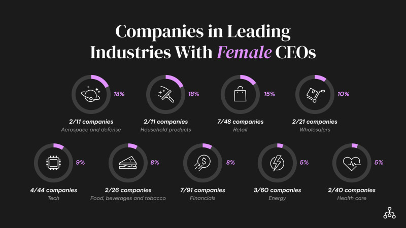Female CEO Diversity Chart 1