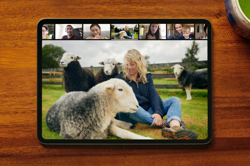 Online Experience Guided Meditation With Sleepy Sheep