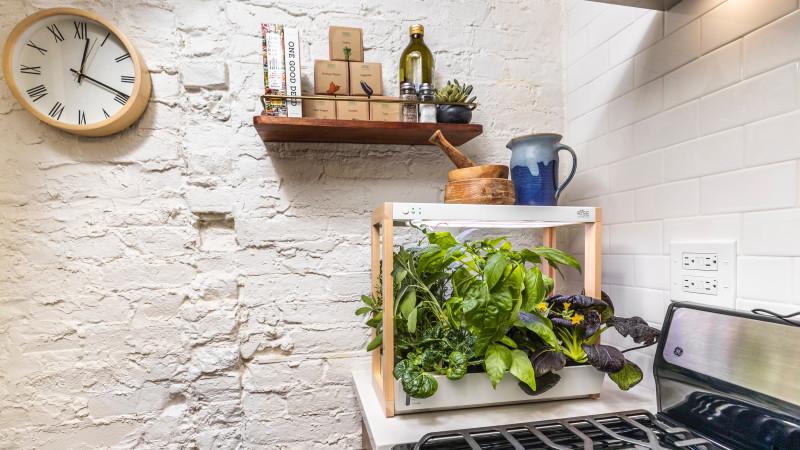 Rise Gardens' personal indoor garden
