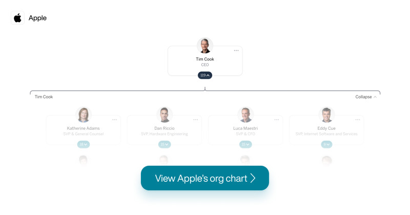 apple org chart