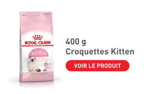 Croquettes Royal Canin Kitten 400 g pour chat
