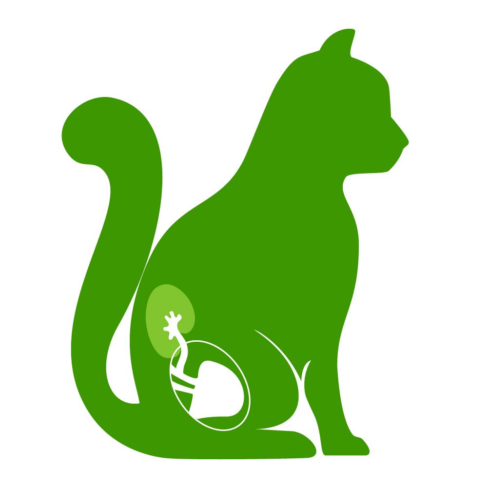 Croquettes pour Chat ayant des problèmes urinaires