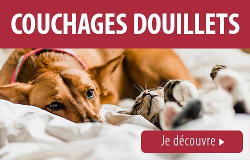 Animalerie En Ligne Nourriture Animaux Et Accessoires