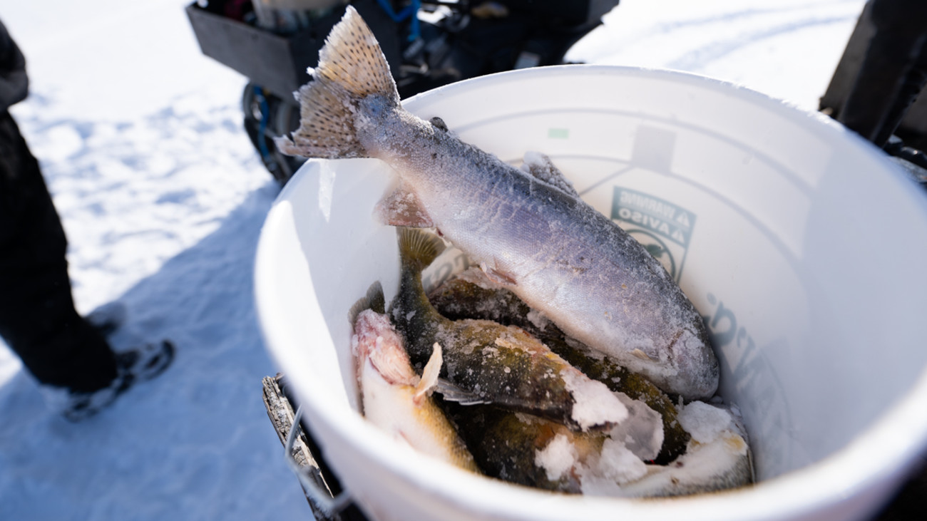 Hardwater Exposure: A Beginner's Look at Ice Fishing