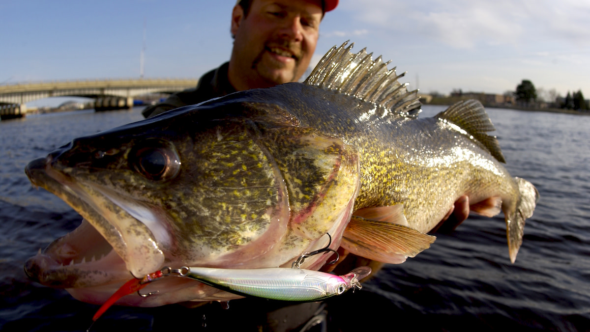 How to Catch Walleye in Spring
